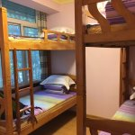 Photo of Dozycat Youth Hostel