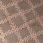 Loch Green Hotel Troon - stains on the bedroom carpet