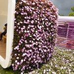花とベンチ