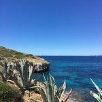 Photo of Cap Rocat