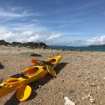 Photo de Salty Dog Sea Kayaking - Day Tours