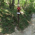 Photo of Sentiero degli Gnomi