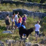 Vis Walking Tours