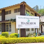 Tea Museum-Outer view
