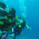 Diving at Moreen Garden with fiends