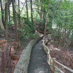 Trail in edwards gardens
