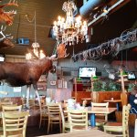 Interior with huge moose