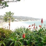 Photo of Laguna Beach