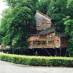 Treehouse, Alnwick Castle and Gardens taken in July 2017
