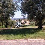 Photo of La Casa tra gli Ulivi