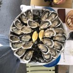 24 Oysters