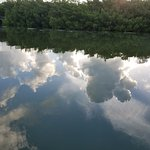 Reflection of the clouds in the cove.