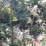 Toujours dans le jardin botanique