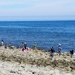 Lanai at the Cove Foto