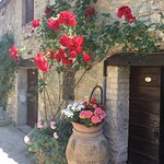 Photo de Fattoria San Donato