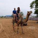 Pushkar - Camel riding