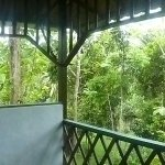 Photo de Sepilok Jungle Resort