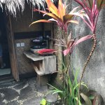 Photo of Flower Bud Bungalows Balangan