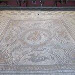 Fishbourne Mosaic