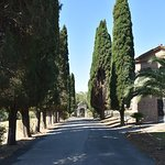 Catacombs, Appian Way, and Hills of outside Rome Tour