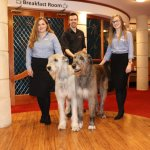 Irish Wolfhounds Juno & Grace with Debbie Danielle and Darren