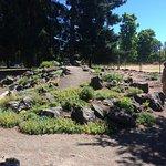Discovery Garden Foto