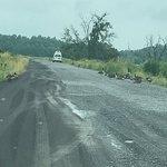 Foto de Montezuma National Wildlife Refuge