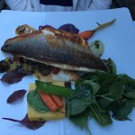 Teri 's Branzino was mouthwatering as well.