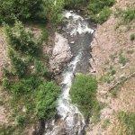 Gunnison National Forest Foto