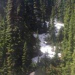 Photo of Whistler Blackcomb
