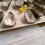 Freshly shucked Bruny Island oysters with our tasting at Pooley Winery.