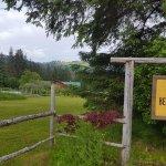 Glacier Bay's Bear Track Inn Foto