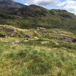 Beautiful weekend at try he wonderful Llanberis Lodges