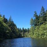 Foto di Lakedale Resort at Three Lakes