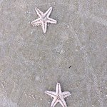 The Zuri White Sands Goa