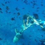 Foto de Bora Bora Lagoonarium