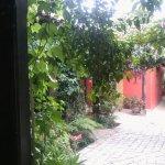Foto de Guayaba Inn