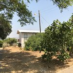 Photo of Kibbutz Inbar Country Lodging