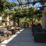 Outdoor lounge under grape arbors