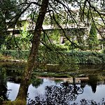 Photo of Le Moulin du Roc