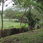 Photo of Kiboko Lodge