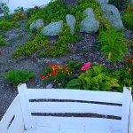 Photo de Casa Lora Bed & Breakfast