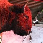 Foto de Buffalo Beef