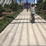 "Biking through ""City of Arts and Sciences""."
