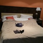 Photo of Hotel Giulia