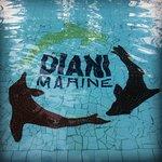 Photo de Diani Marine Divers Village