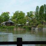 碑文谷公園 弁天池