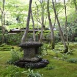 Photo of Gio-ji Temple
