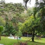 Снимок Bambu Guest House