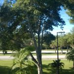 Photo of Comfort Inn Bonita Springs